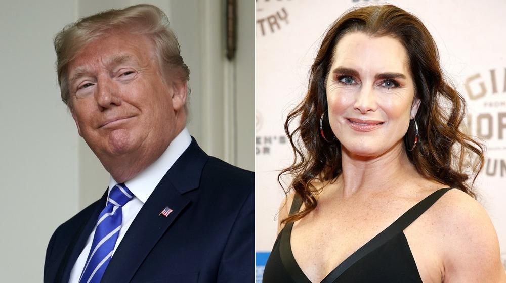 Donald Trump og Brooke Shields smilende