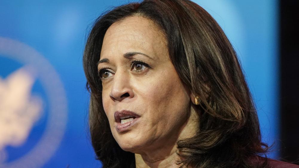 Visepresident valgt Kamala Harris snakker i Delaware