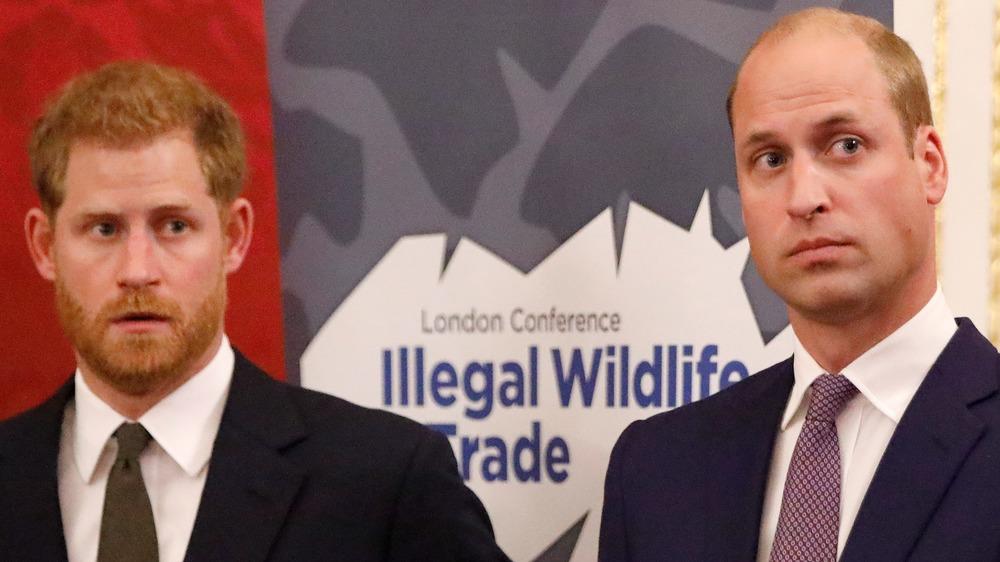 Prins Harry og prins William ser på siden