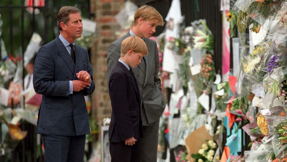 Prins Charles, prins Harry, prins William, hyller prinsesse Diana