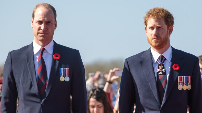Prins William og prins Harry stirrer med alvorlige uttrykk