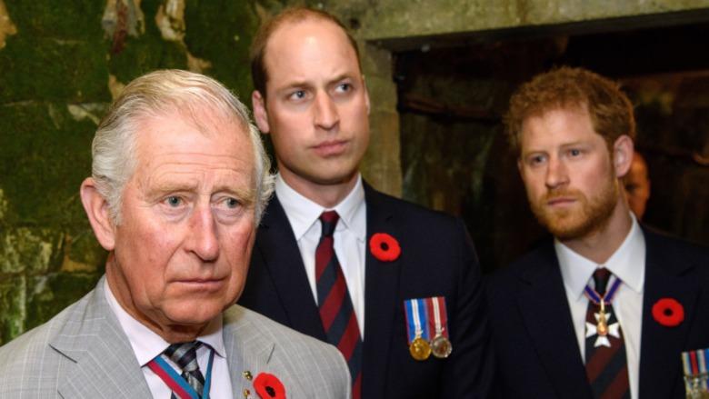 Prins Charles, prins William og prins Harry stirrer fremover