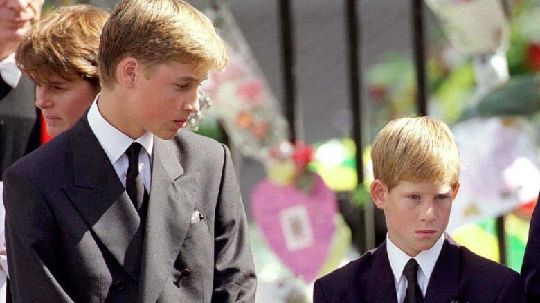 Prins William og prins Harry ved prinsesse Dianas begravelse