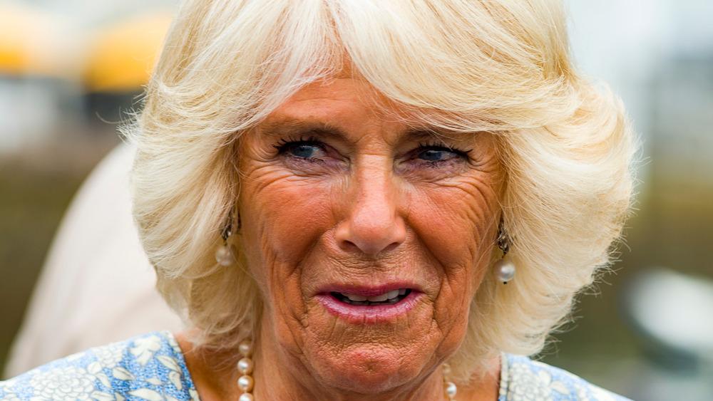 Camilla Parker Bowles fjæret hår