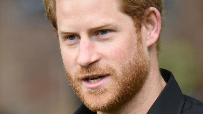 Prins Harry snakker