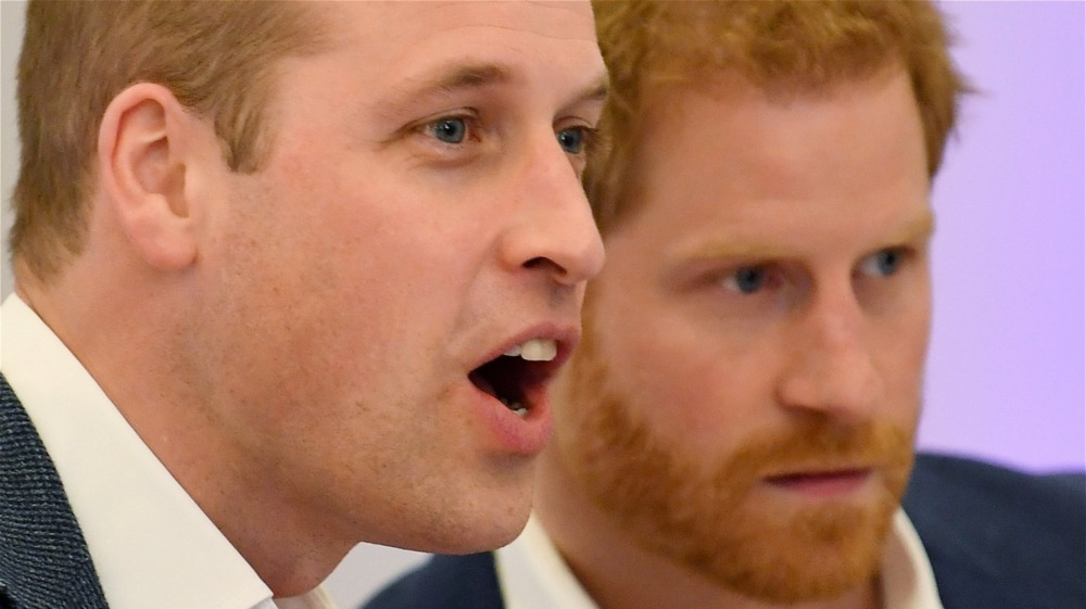 Prins William og prins Harry ser på