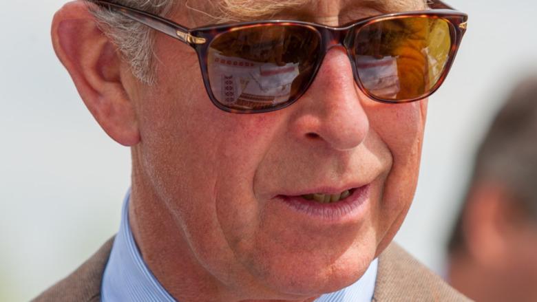 Prins Charles på 2008-arrangementet