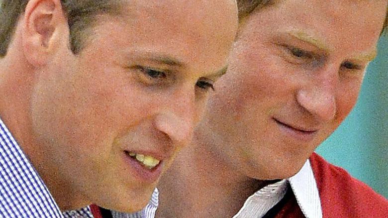 Prins William og prins Harry stenger