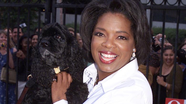 Oprah Winfrey holder en hund 2000