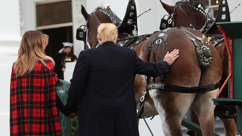 Melania og Donald Trump klapper en hest