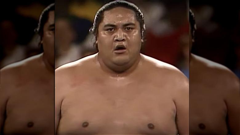 Rodney Anoa'i som Yokozuna