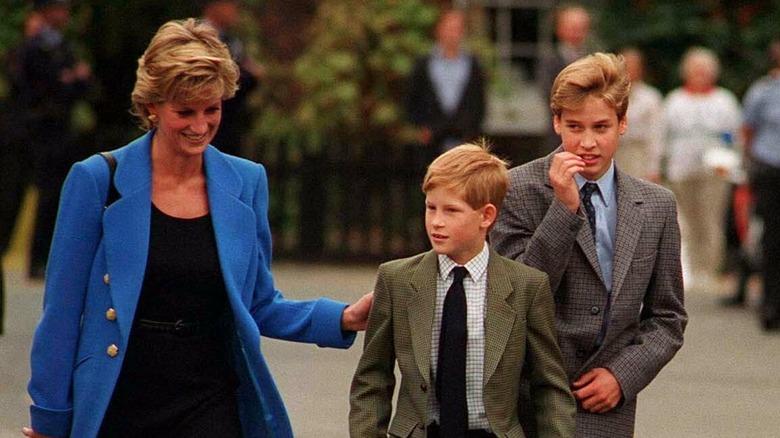 Prinsesse Diana, smilende, gikk sammen med prins Harry og prins William i 1995