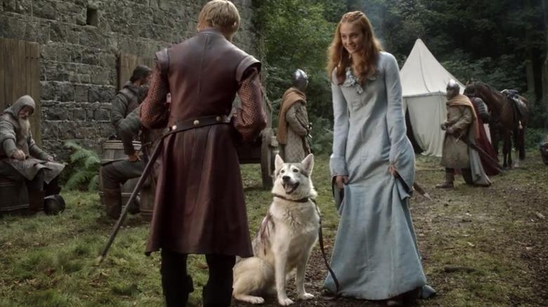 Sansa Stark med direwolf Lady on Game of Thrones
