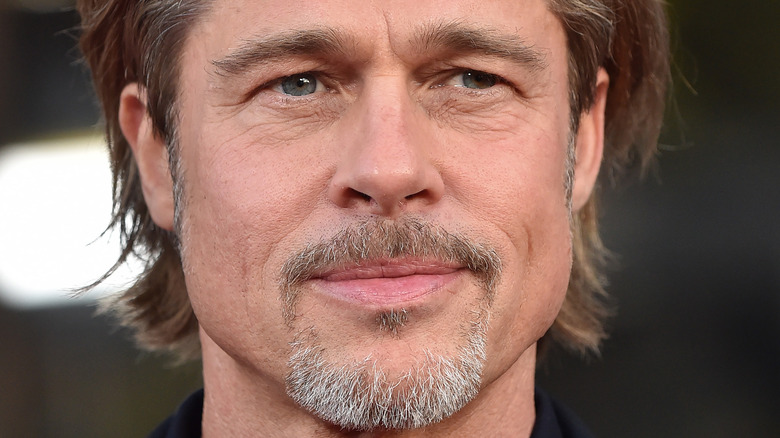 Brad Pitt fippskjegg