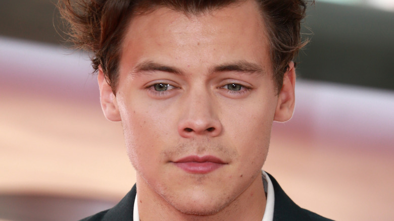 Harry Styles poserer