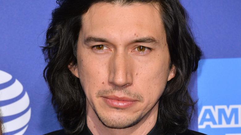 Adam Driver langhåret hår