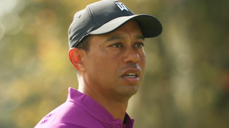 Tiger Woods stirrer