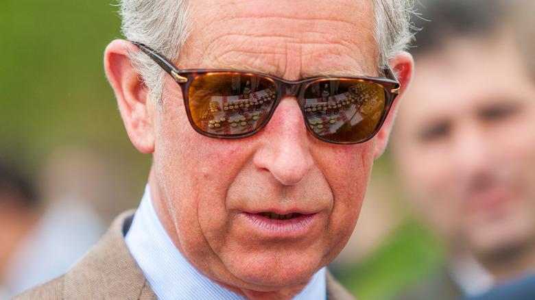 Prins Charles i 2008