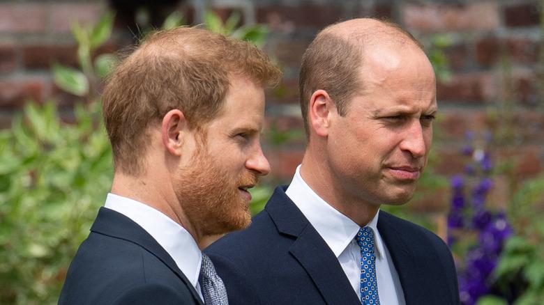 Harry og William ved en seremoni for prinsesse Diana -statuen