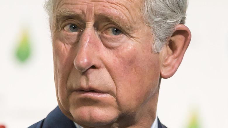 Prins Charles ser bekymret ut